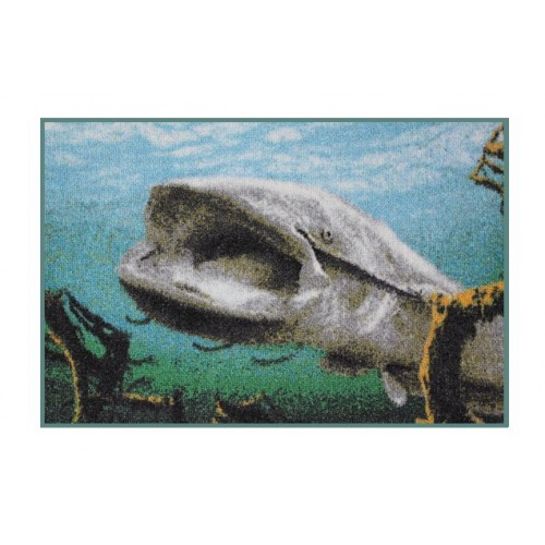 Durų kilimėlis 3D catfish rug